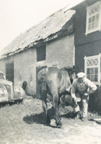 Karl Hallander Allmunds 872, född 1908, skor hästen Rune utanför ladugården där man i dag kan se fin konst på sonen Karl Johan Hallanders sommargalleri.
