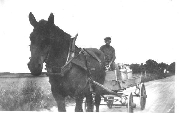 Mjölkskjuts med Ragnar Jakobsson Haltarve 213, född 1894, och hästen Karl-Erik