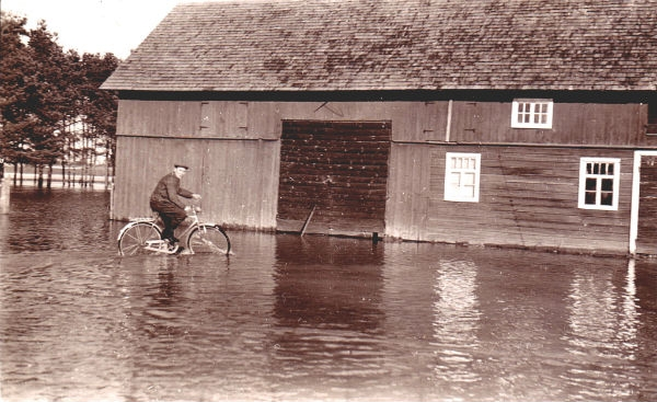 Översvämning vid Hallute 309: Axel Svahn, född 1922, cyklar på gårdsplanen.