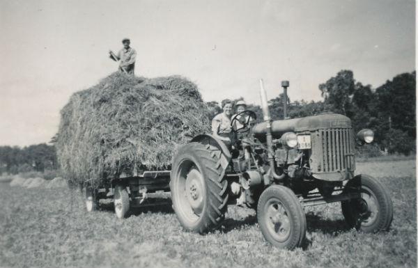 Siglajvs 848 år 1954. Hökörning med Fordson Major
