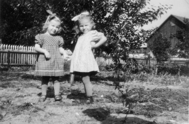 Två granntöser; från vänster Ingrid Olsson Öndarve 880 OO (1945) och Majken Pettersson Dalbo 358 MP (1945).