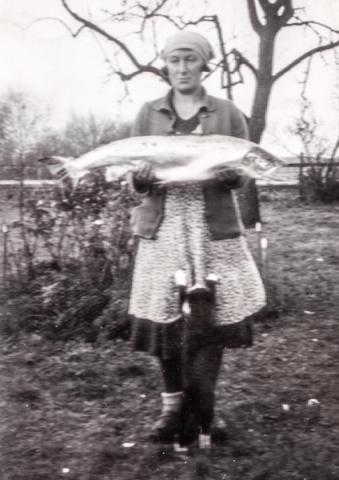 Foto från 1944: Alfhild Jakobsson Haltarve 213, född Salmberg 1906 vid Hallute 173, med en imponerande fångst och en hungrig katt