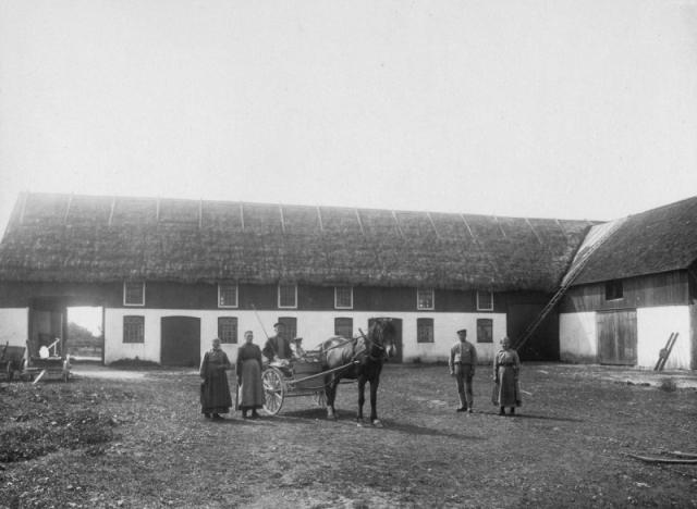 Vi tror att detta är ladugården vid Frigges 344 där Rolf och Margareta Pettersson bor i dag: från höger Emelie Dahlqvist, född Pettersson i Burs, som innan sitt giftermål till Smiss 523 var piga vid Frigges; Karl Jakobsson, född 1893; på vagnen husbonden Jakob Jakobsson, född 1873 och bror till Karl med Jakobs son Herman, född 1911; Jakobs hustru Vendla, född Larsson vid Fie i Lau; och farmor Anna-Stina Johansson, född Nilsdotter år 1854.