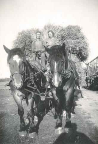 På hölasset sitter Albin Bodin från Burs, dräng på Gangvide 503, och Märta Hansson Gangvide 503, född 1911 och gift till Näs
