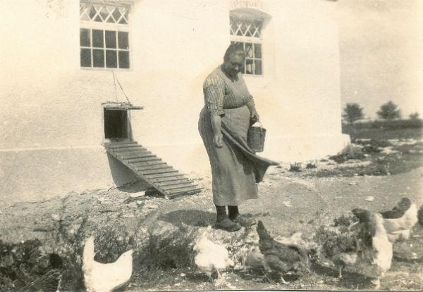 Augusta Jakobsson Kulle 862, född Pettersson år 1880 vid Frigges 342, matar hönsen