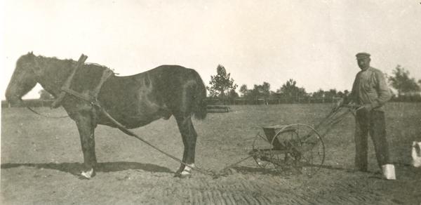 Betsådd på Kulle 862: vid såningsmaskinen Karl – Kull Kalle – Jakobsson, född 1878.