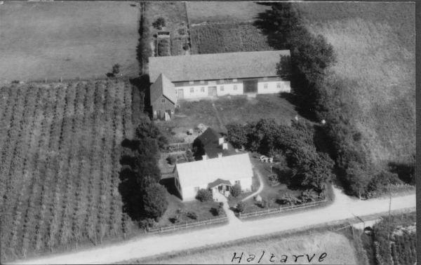 Flygfoto över Haltarve 213 där Maj Bergström och Karl-Inge Siggelin bor i dag.
