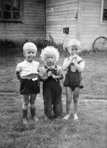 Från vänster Anders Hallqvist Mickelgårds 304GH(1950). Lintotten i mitten är Bertil Larsson vid Smiss 602 YL (1951) idag bosatt vid Andarve 861 AT. Till höger står Alf Nilsson Hallbjärs 611 VF (1949).