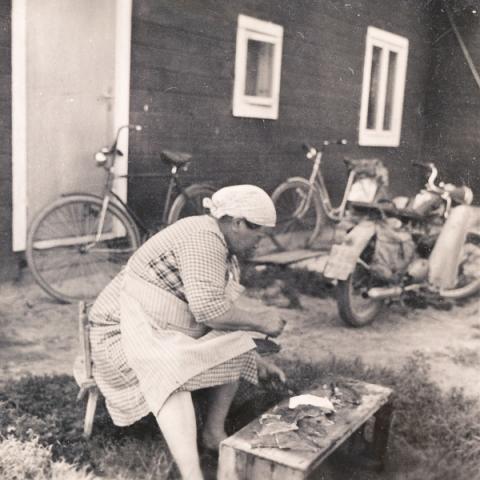Smiss 523: Emelie Dahlqvist, född Pettersson i Burs, rensar fisk.