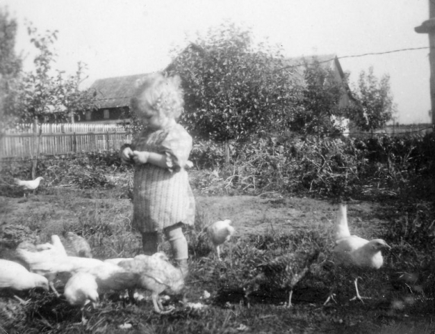 Ingrid Olsson vid Öndarve 880 OO (1945) matar hönsen.