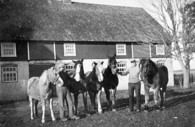 Vi tror att det här kan vara Folke 868 AN. De som håller hästarna skulle då vara från höger Anton Pettersson (1881-1970) och till vänster hans son Ragnar (1912-2006), som tog sig efternamnet Fredriksson.