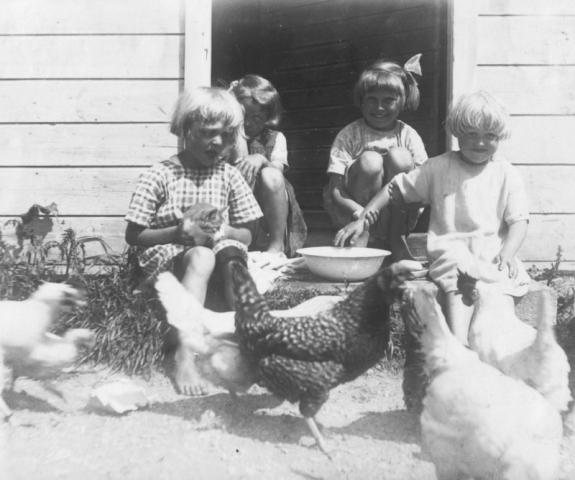 Sommar och sol, kattungar och höns- det är livet. Vi är inte klara över om fotot är taget vid Mickels 603 VL eller vid Hallute 115 LO. Men från vänster är det Brita Lavergren (1922). Barbro Lavergren, gift Essemyr; Kerstin Johansson Mickels 603 VL (1921) gift Lund och Birgit Lavergren. De tre flickorna Lavergren var döttrar till den tidigare skolmästaren i När Knut Adolf Lavergren (1889), som som var skolmästare mellan 1920-22 och sedan flyttade till Boge.