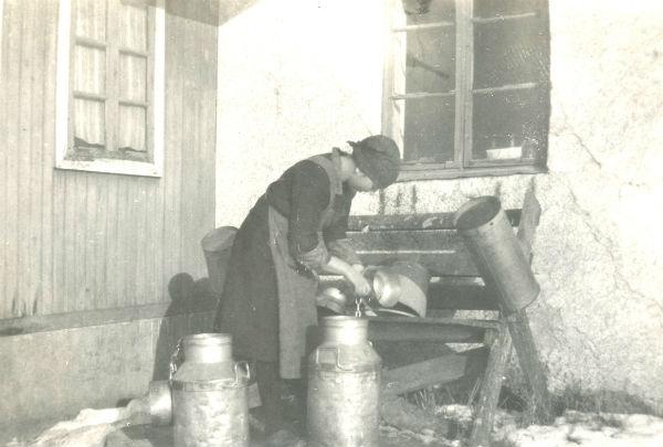Hermanna Dahlgren Kulle 862, född 1909, diskar efter mjölkningen.