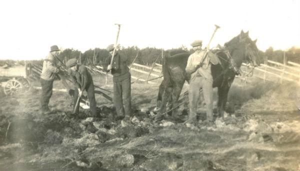 Från vänster Karl – Kull-Kalle – Jakobsson Kulle 862, född 1878; Karl-Gustav Pettersson Haltarve 253, född 1914, och hans far Karl Pettersson Haltarve 253, född 1885 i Burs; samt Kull-Kalles bror Jakob Jakobsson Kulle 862, född 1874, bereder odlingsmark med flåhackor/jordyxor.